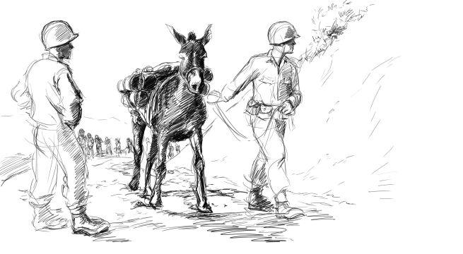Mule skinner